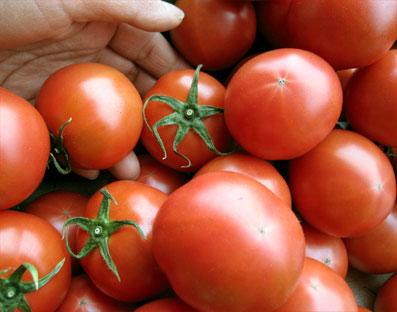 tomato-fruit