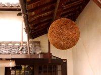 Sake-Pine-Ball