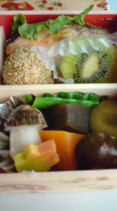 Ekiben/Railway Station Lunch Boxes-Bento 7 | SHIZUOKA GOURMET