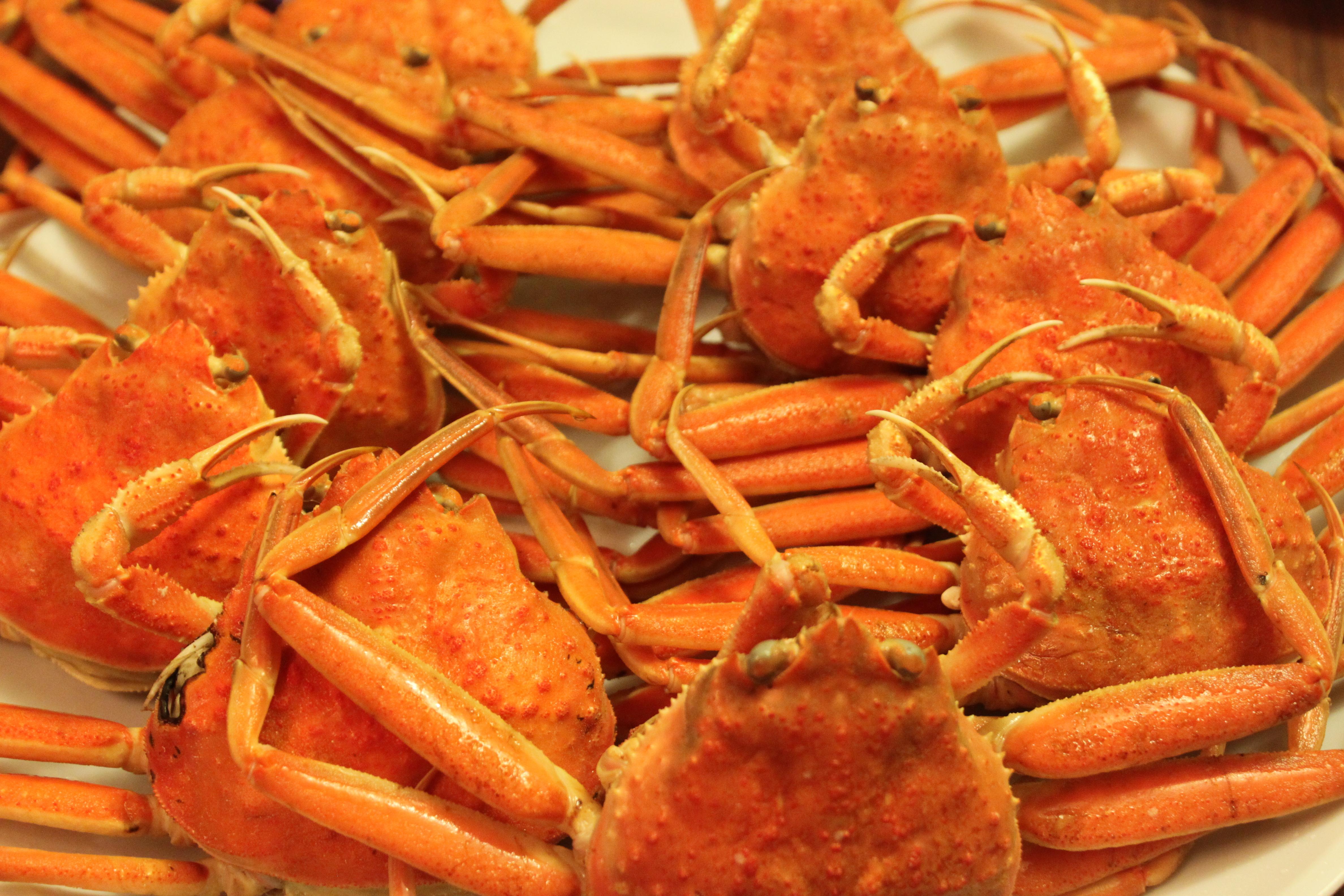 Seafood Boil Snow Crabs Shrimp Conch Sausages Corn