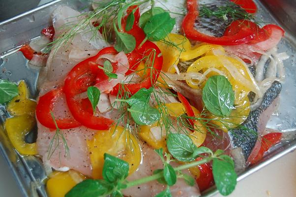 Suzuki Fish Taste
