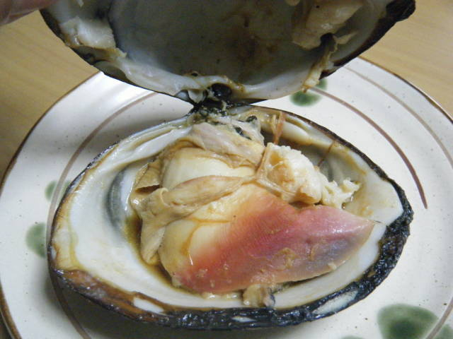 SHIZUOKA GOURMETCategory Archives: HokkigaiJapanese Shellfish Species 12: Surf Clam-Ubagai-姥貝Popular ArticlesArchivesCategoriesPagesBeerBeer BrewingBlogrollfavourite BlogsFranceGastronomyHealthHollandIrelandJapan Information WebsitesJapanese Cuisine RecipesLiens francaisLife in JapanLiquor ShopsMy favourite websitesMyother Blogs/websitesRecommended sushi restaurants in the World!sakeshochusushiSwedenTravelWhisky日本語のブログ