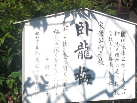 SN3O5076
