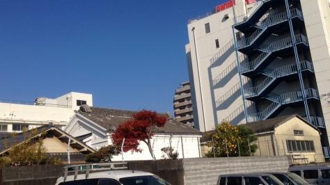 behind-SEIYU1