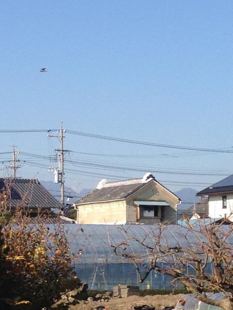 Sodeshi-袖師