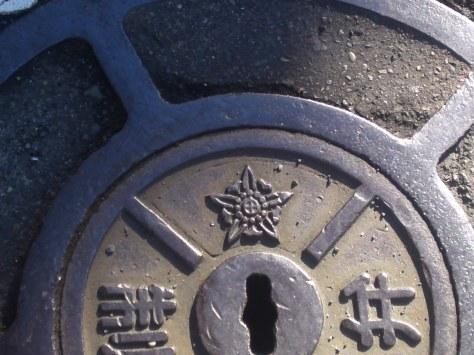 SN3O5133