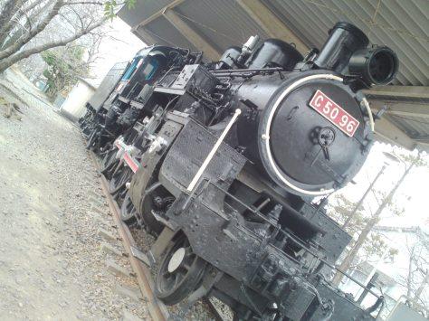 SN3O5565