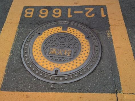 SN3O5597