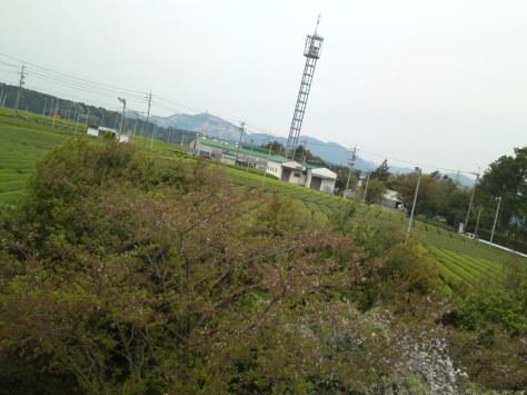 SN3O0107