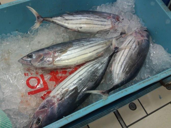 More Seafood and Fish At Parche Supermarket in Shizuoka City: With new Bonito/Katsuo!