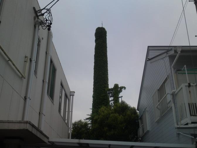 Abandoned Shizuoka: Ivy Chimney in Shizuoka City!