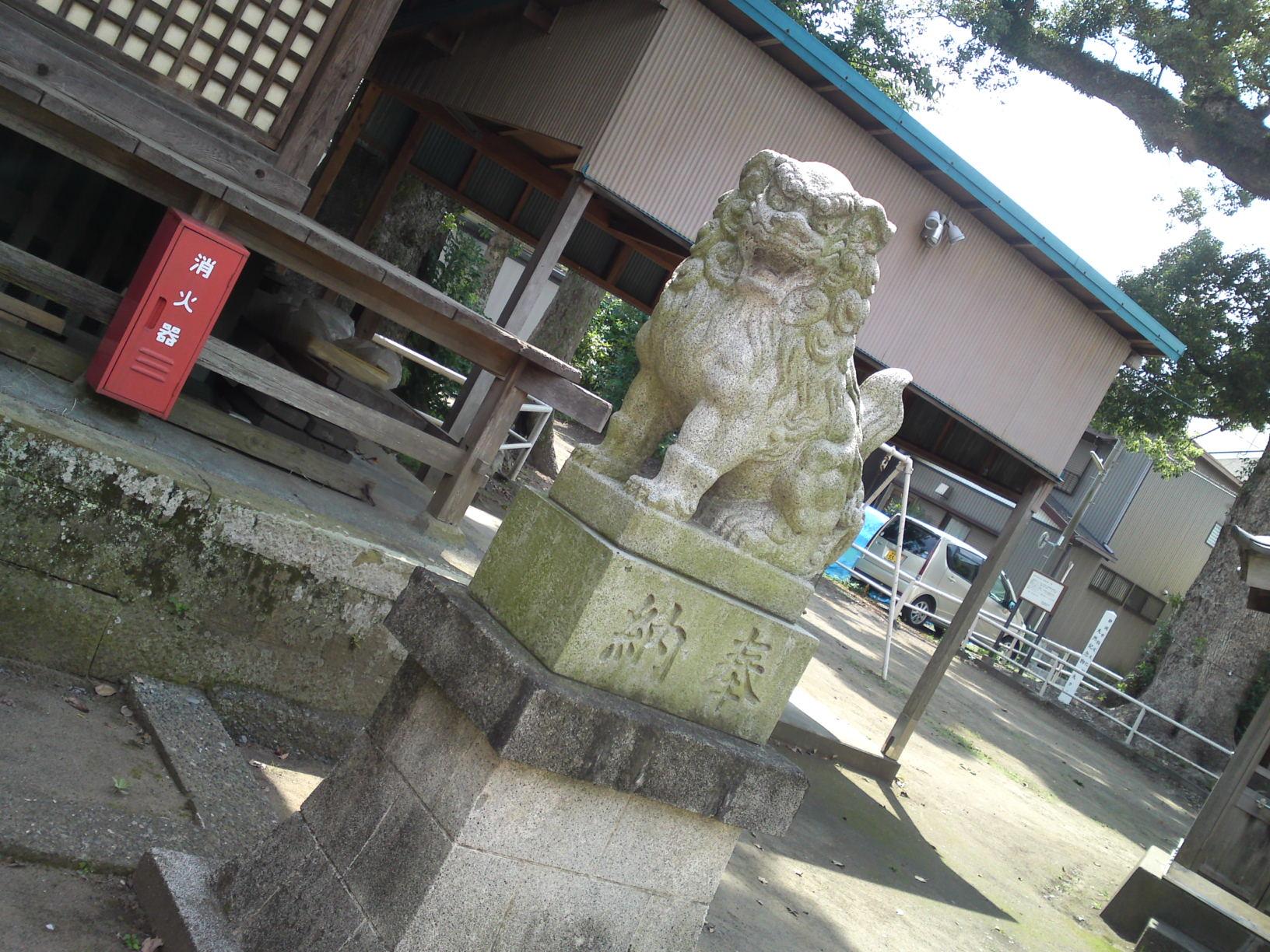 yashiro mature personals Watch kozue yashiro at freeones free sex videos, photo sets and biography all kozue yashiro videos, pictures and more.
