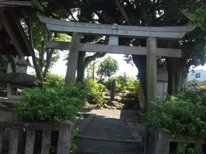 Kikkawa Hachiman (吉川八幡神社) Shrine in Kitsunegasaki Chyo in Shimizu Ku, Shziuoka City!