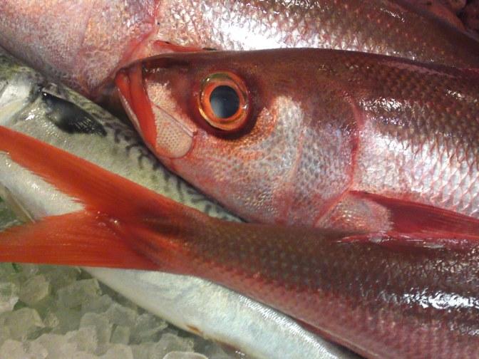 "Local Shizuoka Fish & Seafood at Parche Fish Market In Shizuoka City: Including ""Red mackerel/Bonnetmouth!"